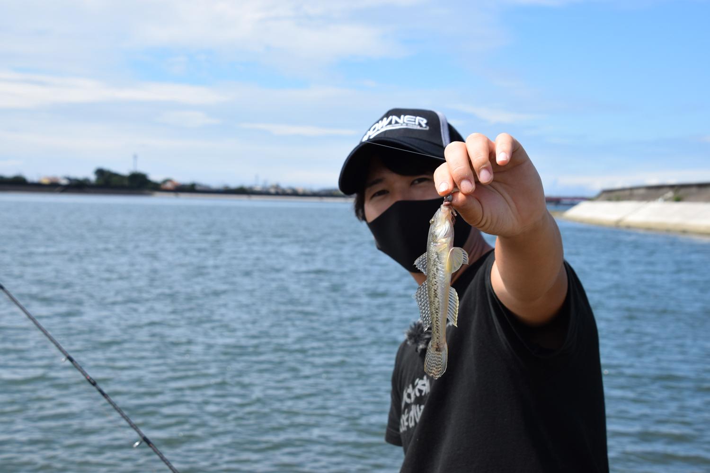 愛知県三河湾にある豊川河口でハゼ釣り